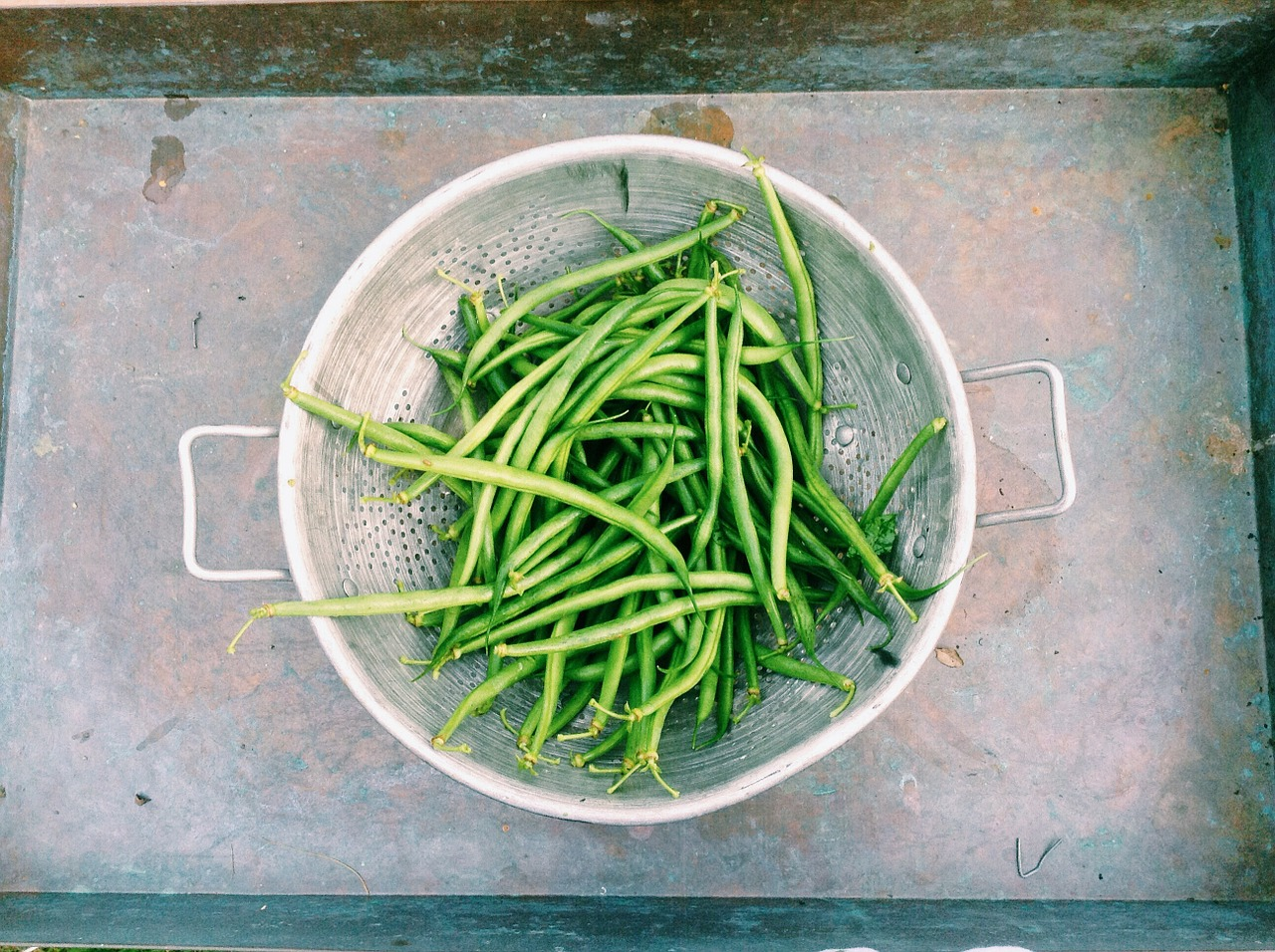 Oven Roasted Green Beans with Garlic